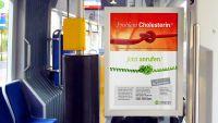 Synexus Kampagne Cholesterin-Studie