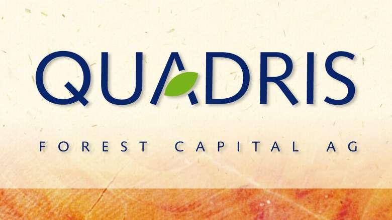 Quadris Logo- und Namensentwicklung