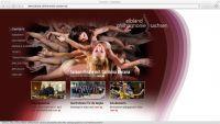 Website Elbland Philharmonie Sachsen